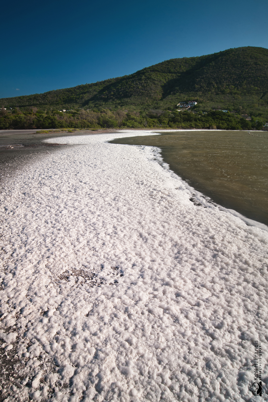 The Foam - Yallahs Pond - St. Thomas