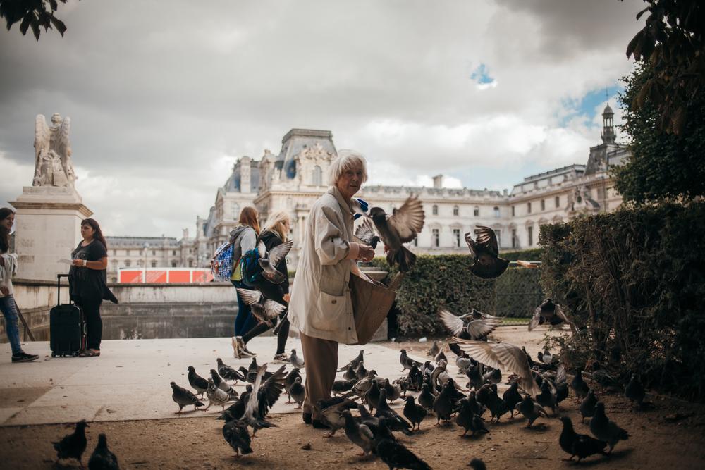 Shot in Paris, France. September 2015.