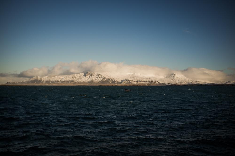 iceland-day-2-6.jpg