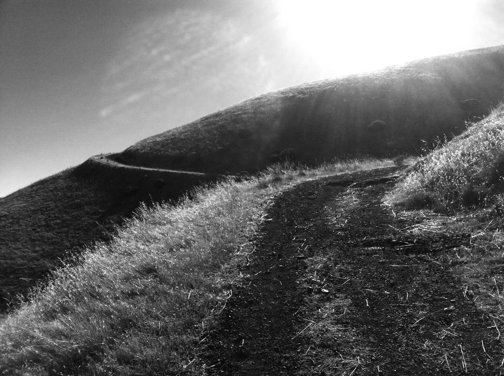 Sun walk, 2012. Shot with iPhone 4.