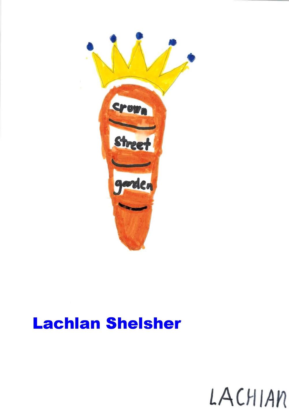 LachlanShelsherY2.jpg