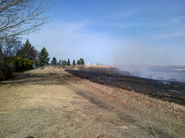 Grass Fire in Silverwood Heights