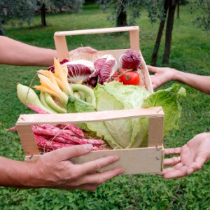 Silverwood Heights community Gardening