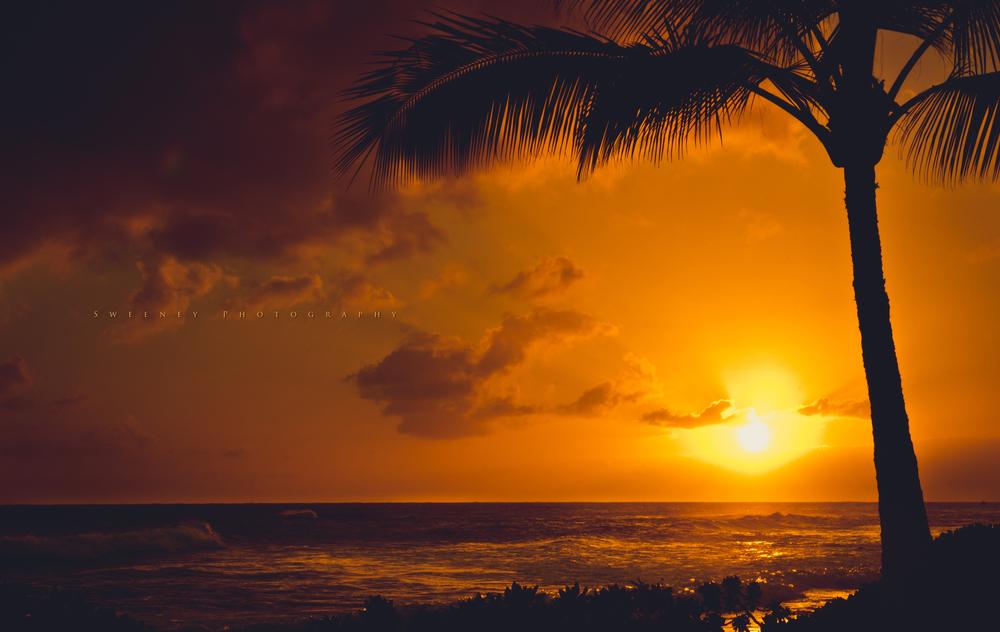 Travel To The Tropics | Hawaii