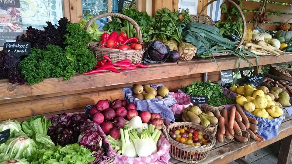 ommuurde tuin groenten.jpg