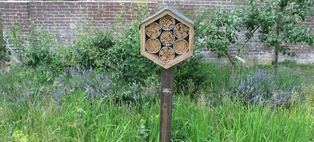 06-18 Bijenhotel.jpg