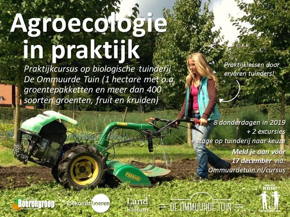 Poster 2 Cursus Nld.jpg