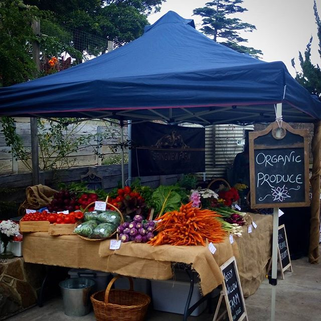 Our first market day may have started with a missed alarm but it ended with lots of happy customers and a knackered team. Big thanks to @thediggersclub and the team at Heronswood for having us. Also, a huge thanks to all our customers.  @mikedensham @smallgiants @berryfeather  #organic #farmersmarket #thediggersclub #harvestfestival #knackered