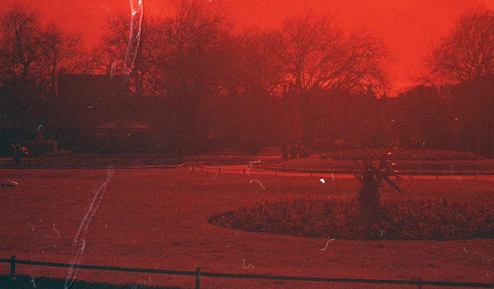 Red Filtered007.jpg