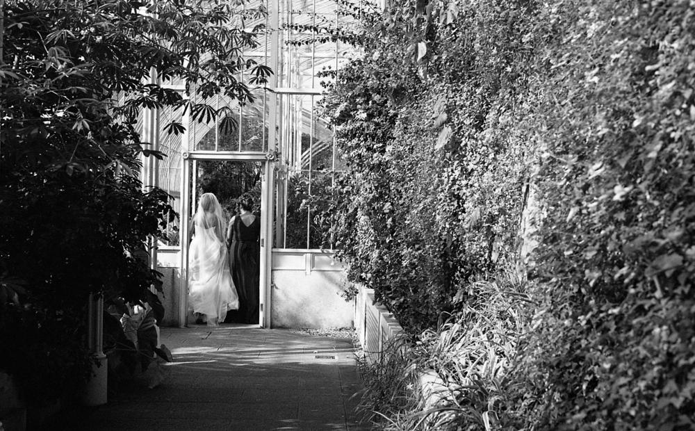BotanicGardens002.jpg