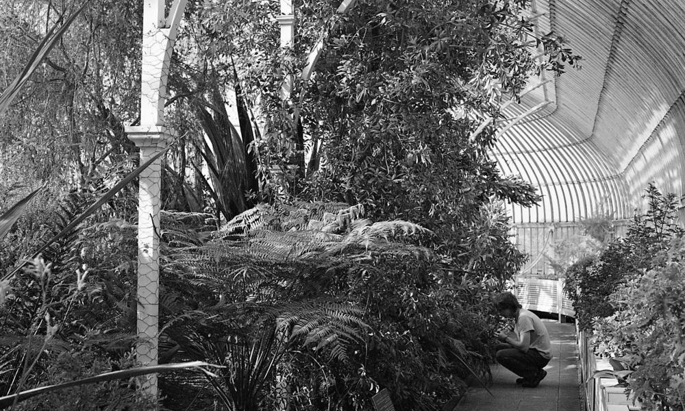 BotanicGardens006.jpg