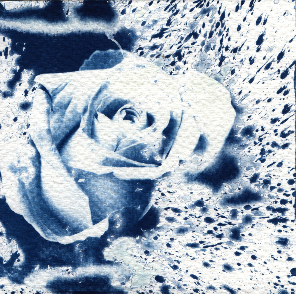 cyanotype_ellieberry