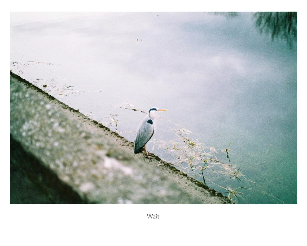 00_wait_web.jpg