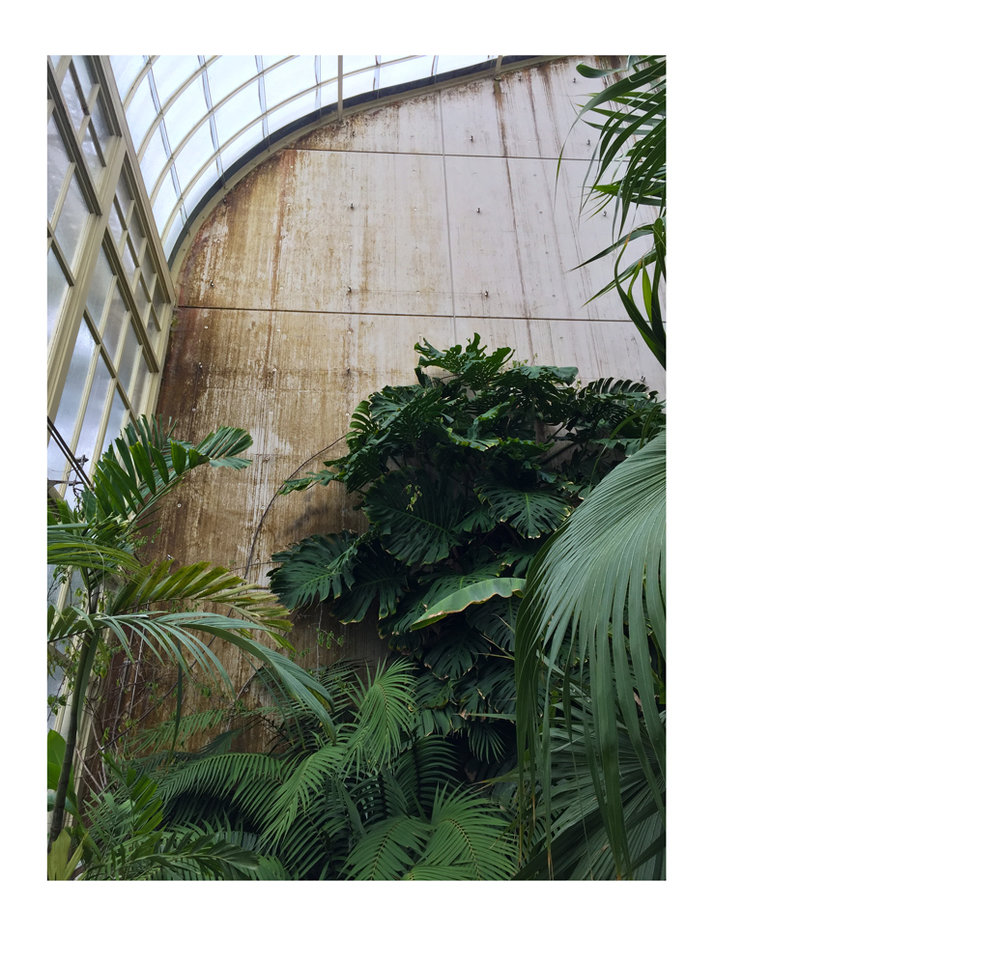 BotanicGardens002-alt.jpg