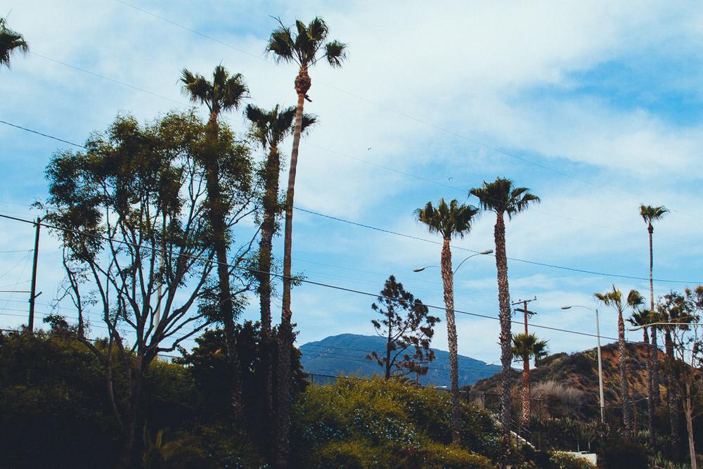 losangeles_california_surf_lesleyade-3.jpg