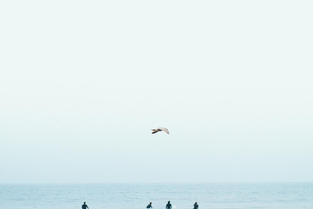 losangeles_california_surf_lesleyade-17.jpg