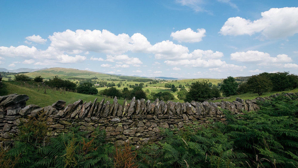 Stone Walls In Windermere, Lake District, United Kingdom