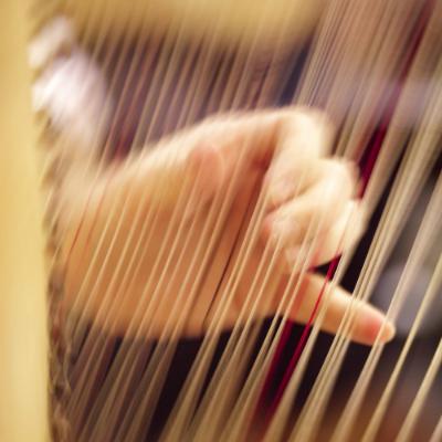 Harpist in Tucson
