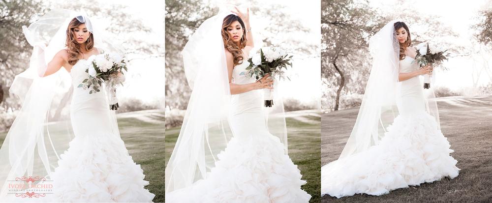 La mariposa wedding pictures tucson