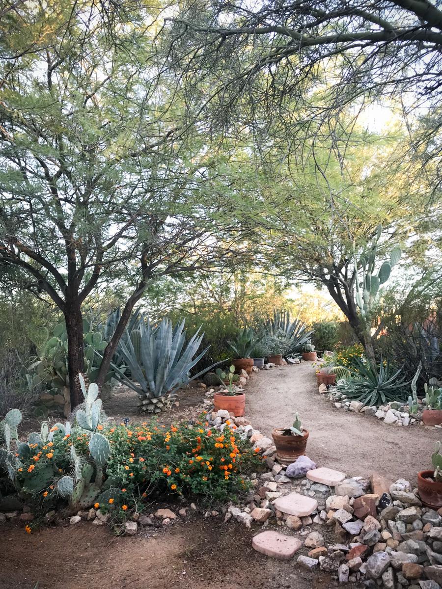 6601 N Desert View Dr-2034.jpg