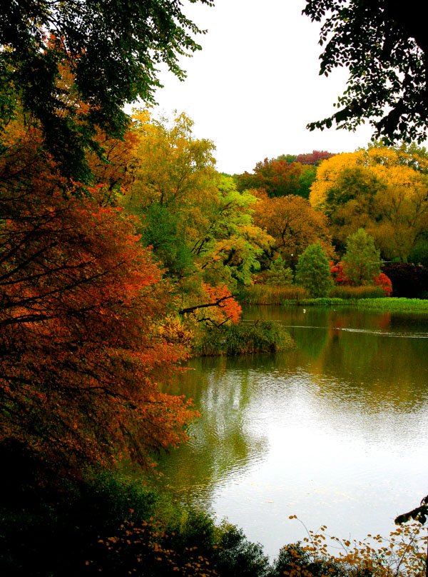 Fall, CP3.jpg