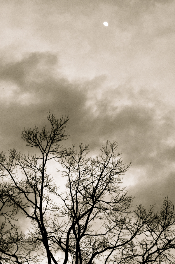 Winter sky NYC.jpg