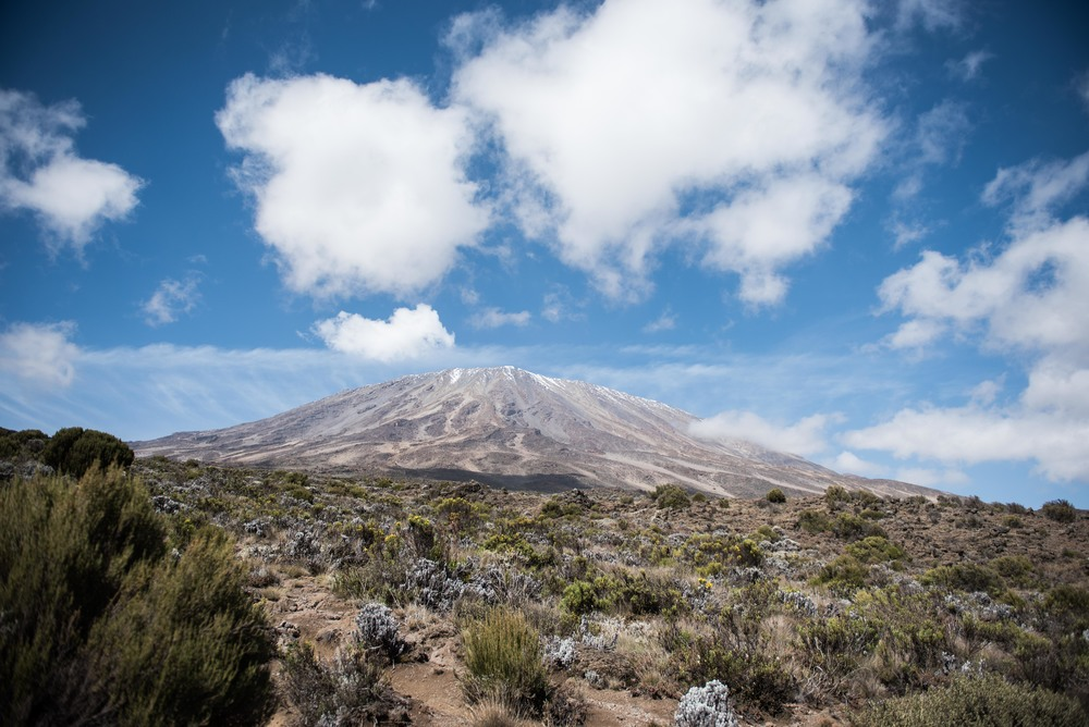 WEB_Kilimanjaro-14.jpg