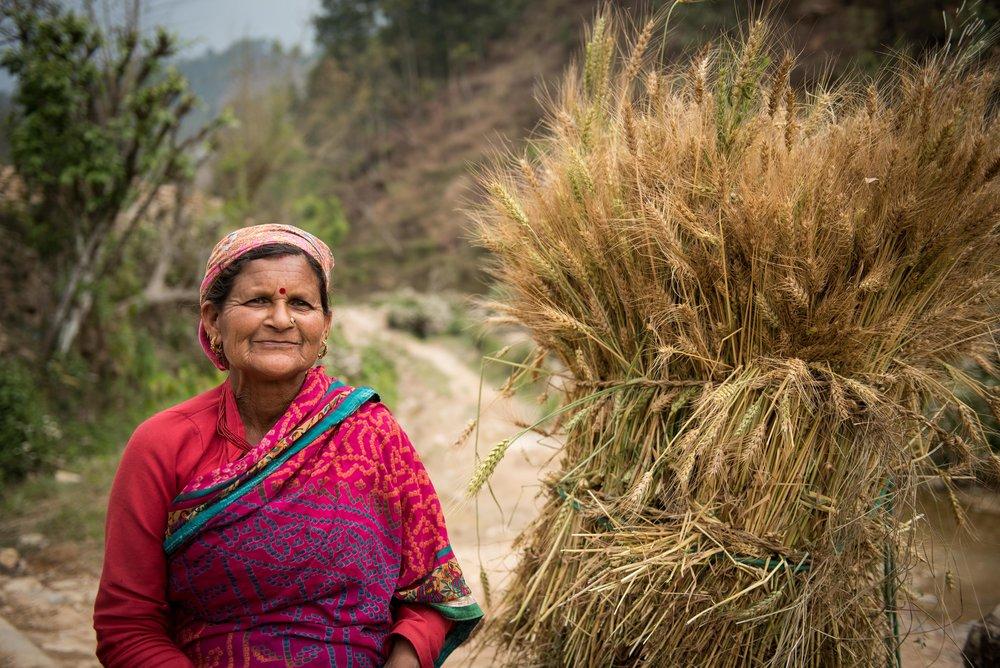 Nepal-web-18.jpg