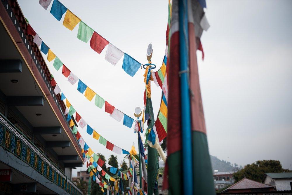 Nepal-web-30.jpg