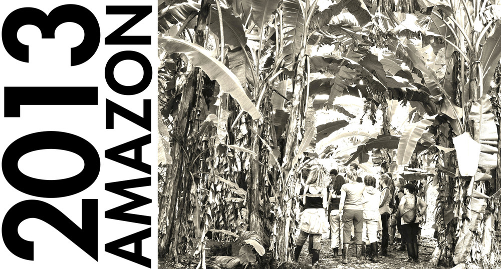 2013 | AMAZON.jpg