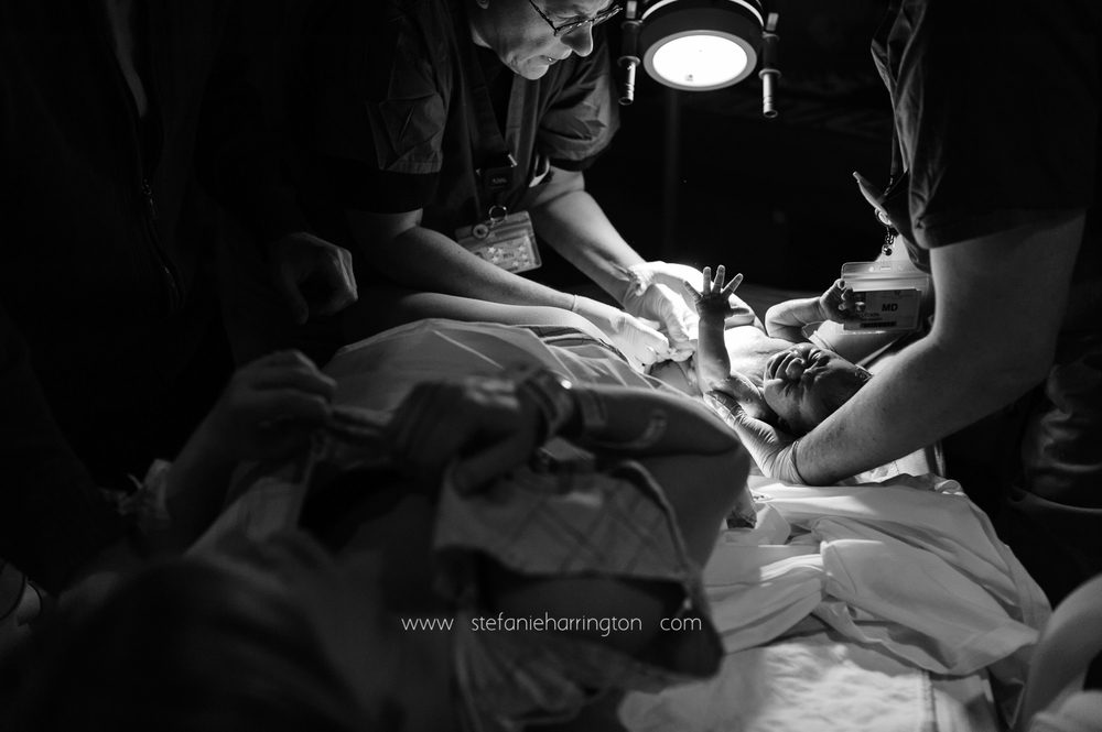 Stefanie-Harrington-births-4.jpg