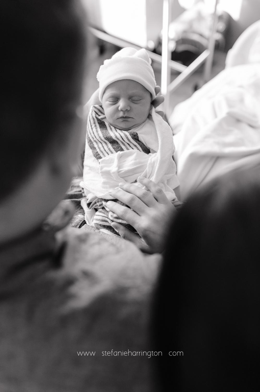 Stefanie-Harrington-births-10.jpg