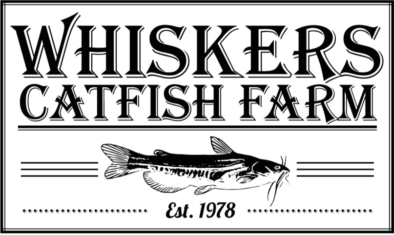 Fish Species For Sale — Whiskers Catfish Farm
