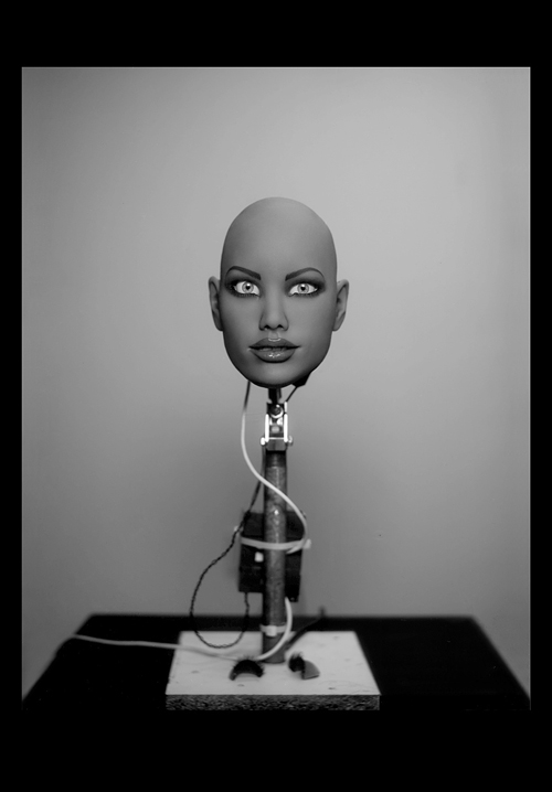 Robotic head. Realdolls. CA