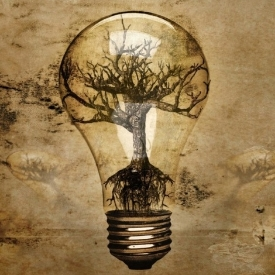 light_bulb_in_tree_roots - Copy.jpg