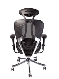 51172_1041_SAM_DESK_CHAIRS_back.jpg