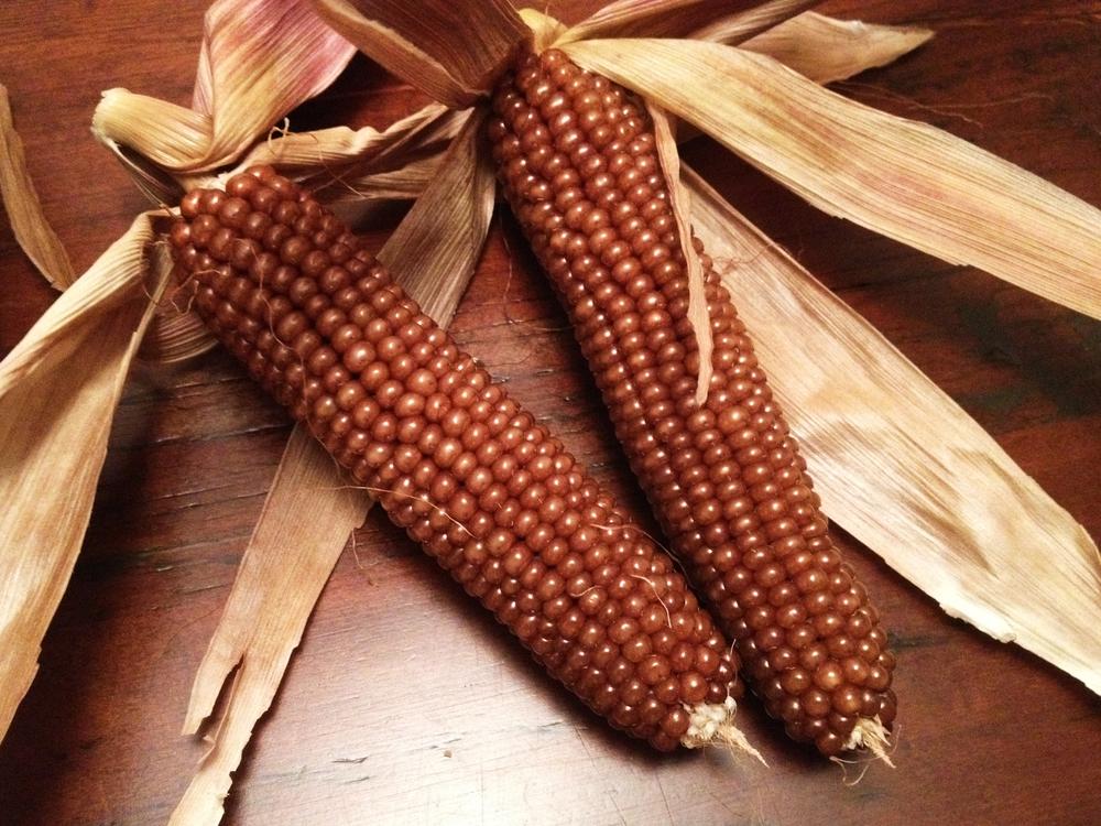 corn_1M.jpg