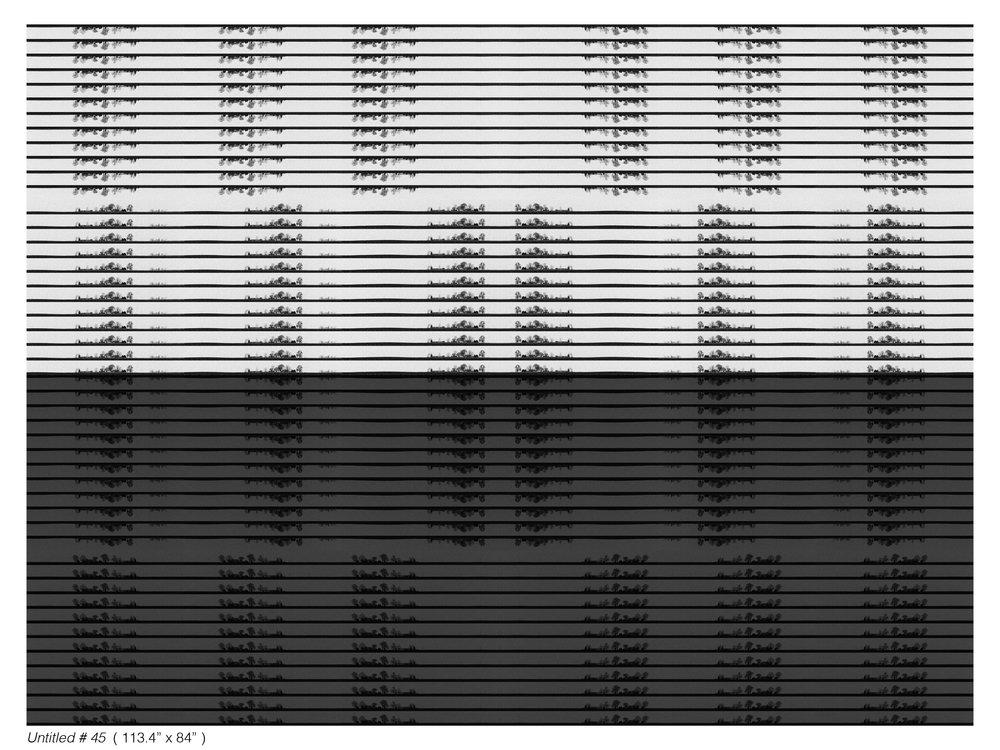 Untitled+%23+45.jpg