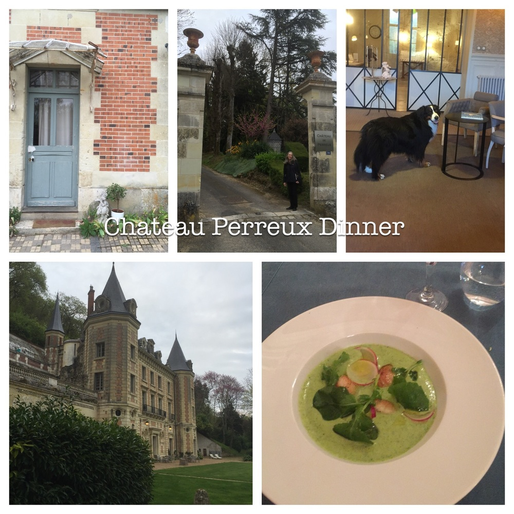 Chateau Perreux, Amboise, France is also a hotel.