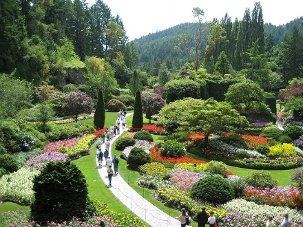 You can walk along this path and find many paintable scenes in Butchart Gardens. This is just one of the several gardens on the Butchart Garden property