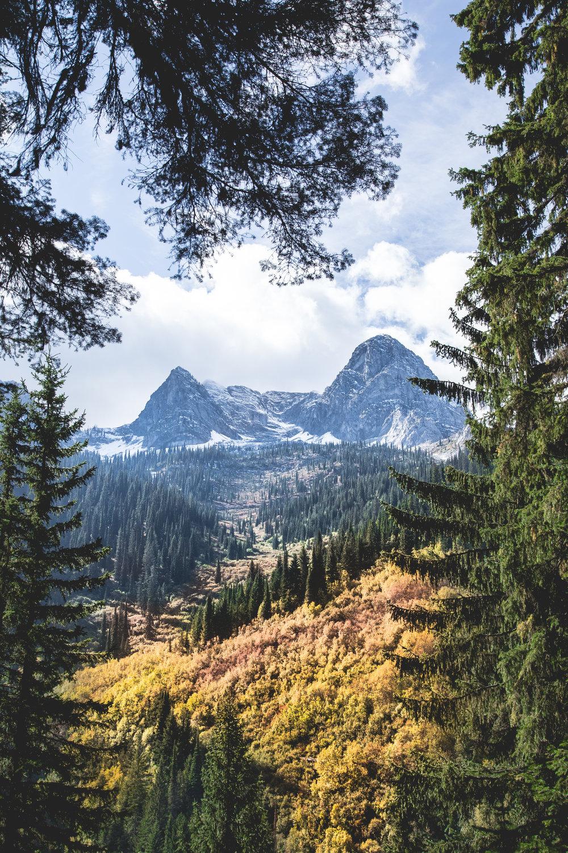 FERNIE - British Columbia