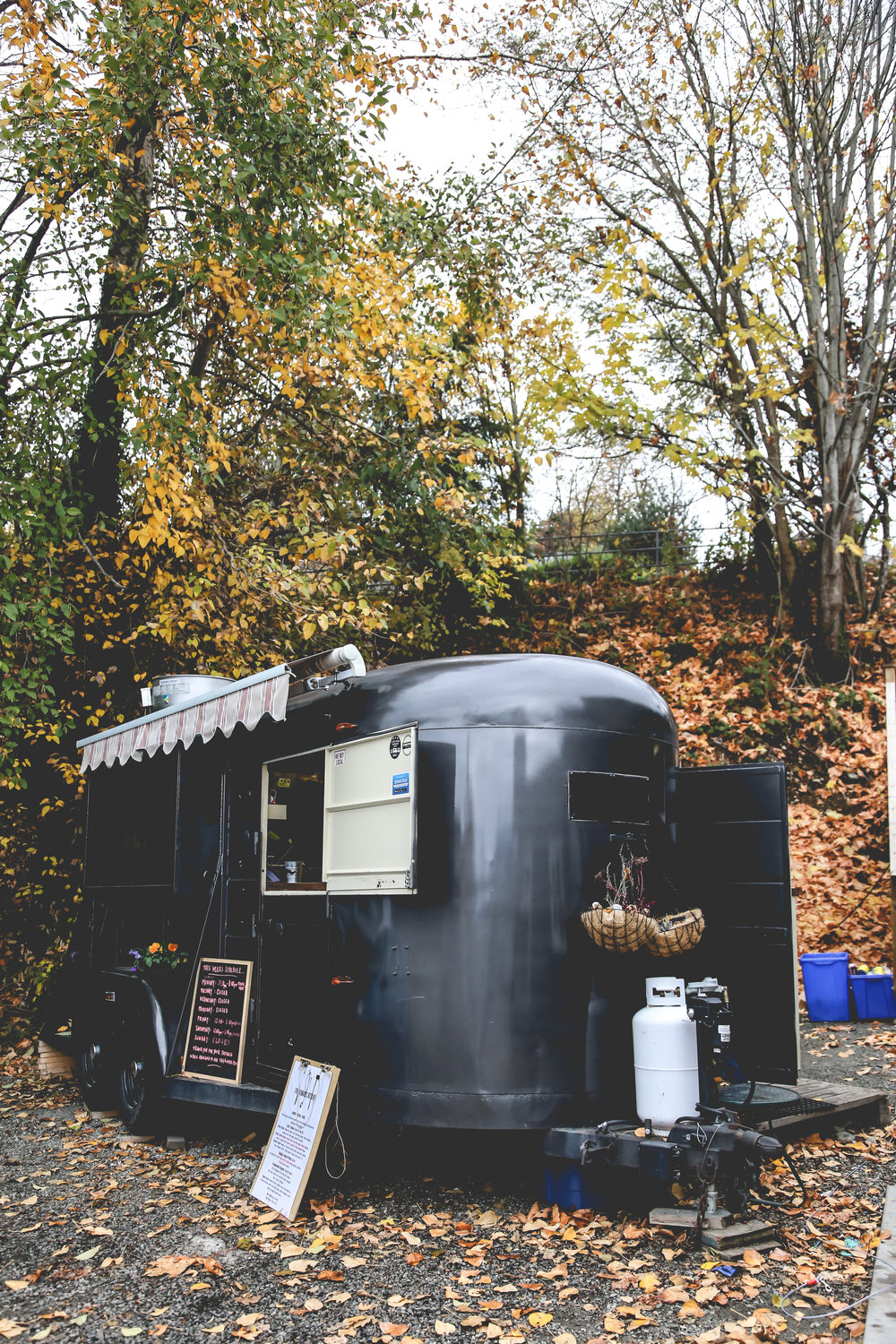 THE NOMADIC KITCHEN - This cute little spot is located right beside Gibsons Tapworks.Farmed. Foraged. Found. BC born & bred food truck serves amazing bites...including to die for tacos.