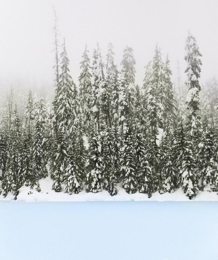 WHISTLER - British Columbia