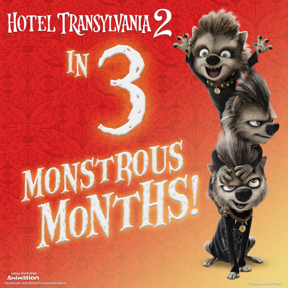HotelT_3_months_v6.jpg