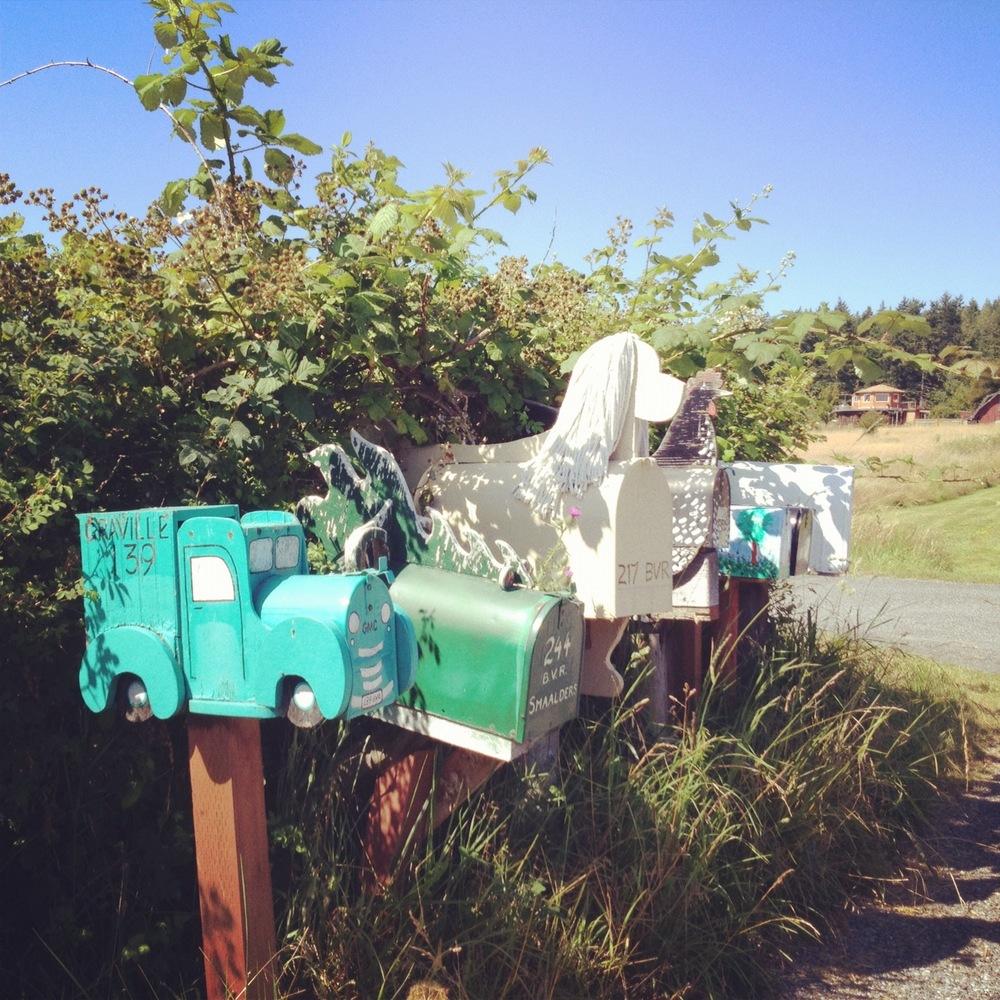 crazy mailboxes