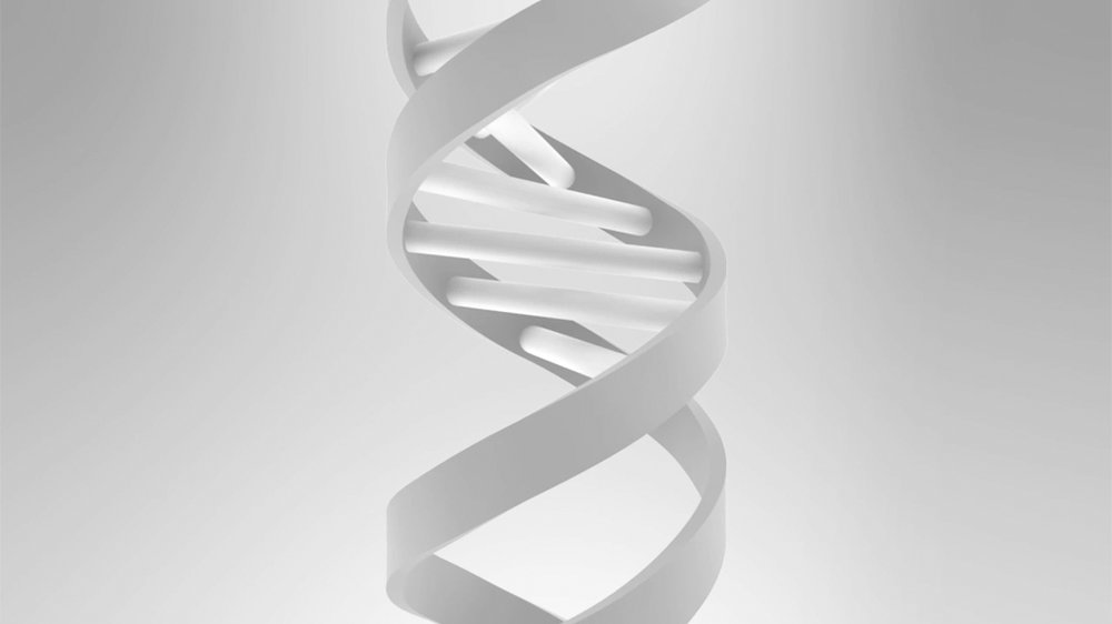 DNA Structure -