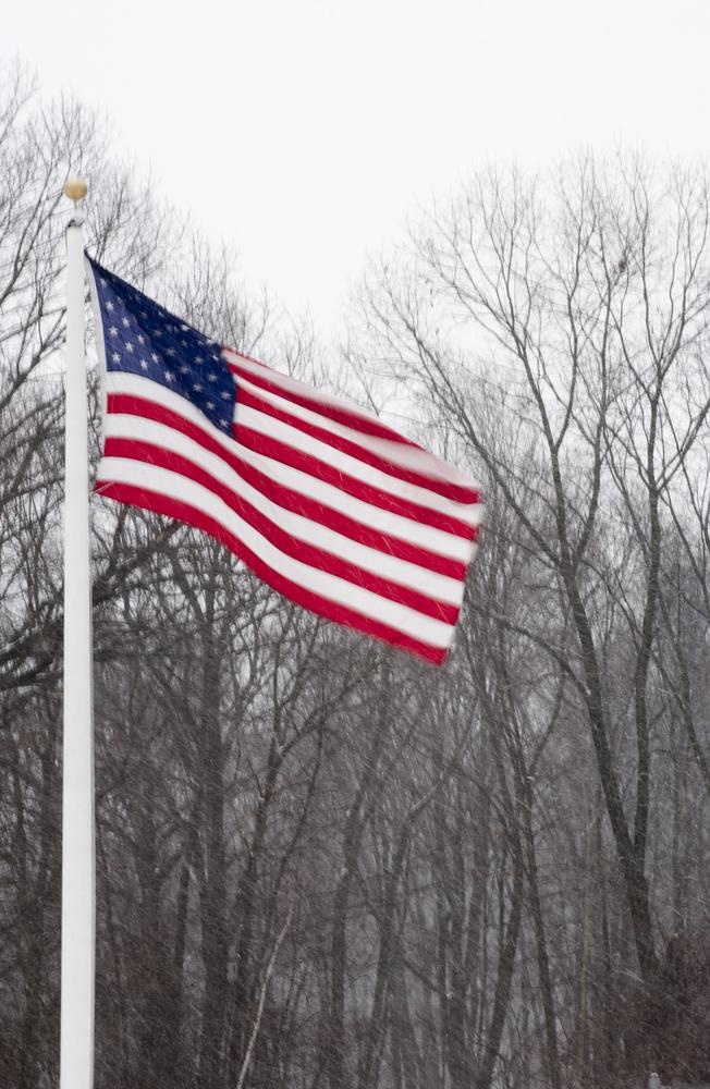 Winter US Flag