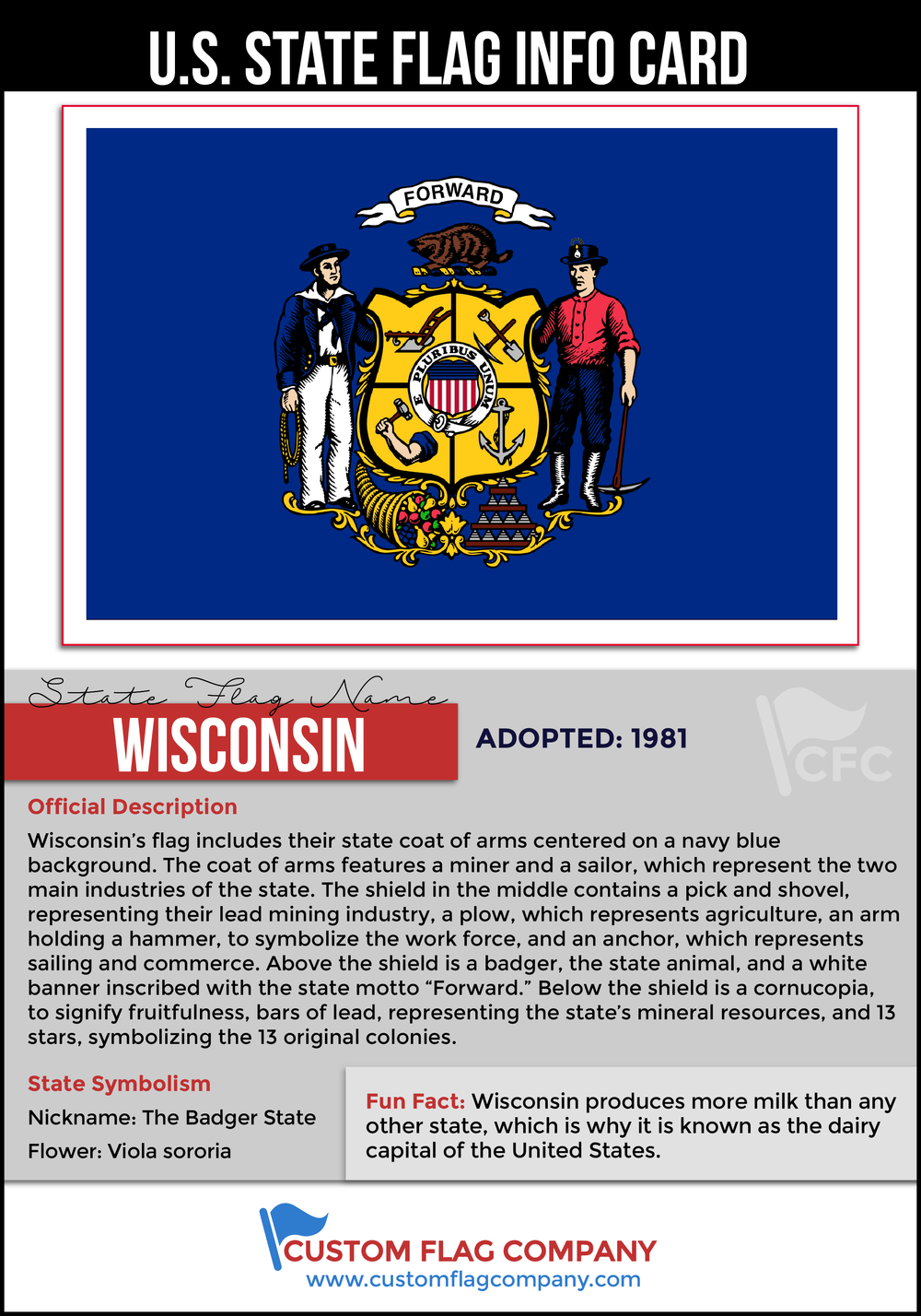 Wisconsin State Falg