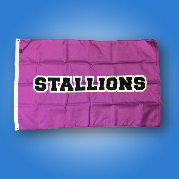 Stallions_Instagram