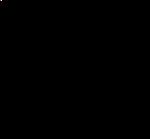 SPR logo black.png